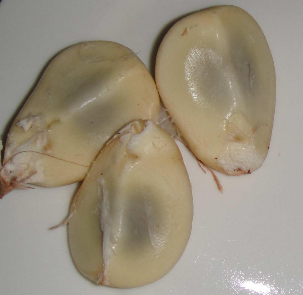 piel de serpiente fruta 2 1024x998 Piel de serpiente (蛇皮果)