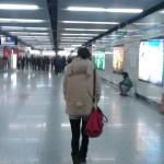 Una osa en el metro!