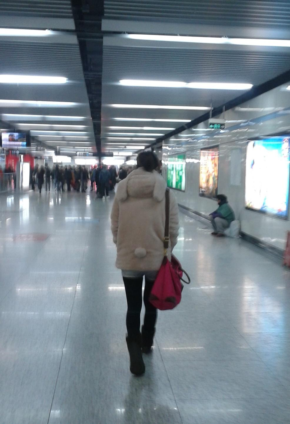 osa Una osa en el metro!